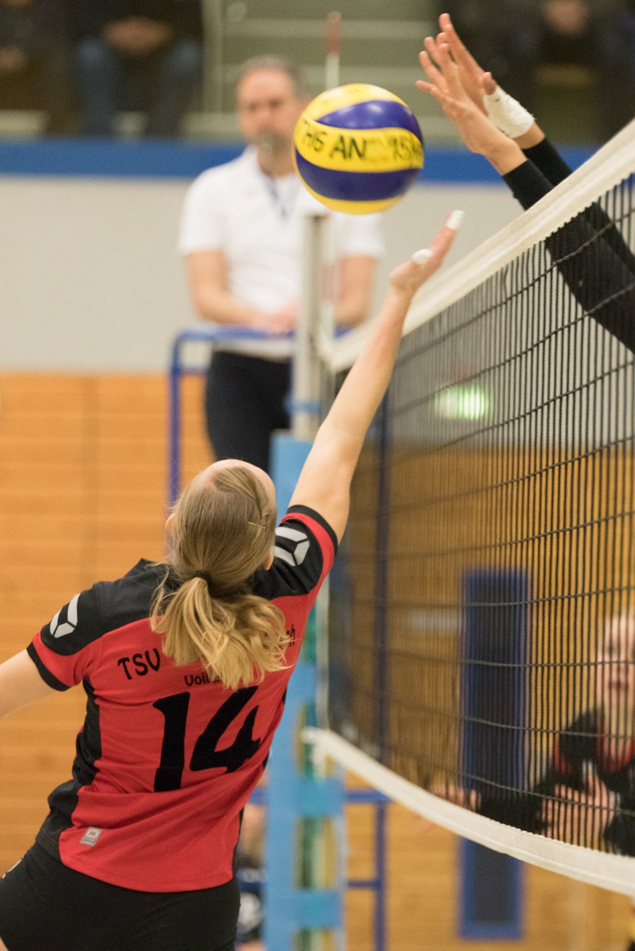 Sportfotografie - Volleyball